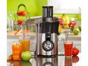 Big Mouth Juice Extractor 800 Watt Fruits Vegetable Smoothie Stainless Steel 9SIA1RX3RM4529
