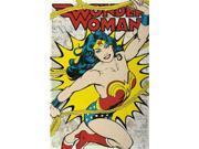 DC Comics Wonder Woman Poster Print (24 X 36)