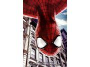 Amazing Spider-Man 2 - Spider-Man Poster Print (24 x 36) 9SIA1S73PA6947