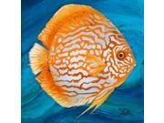 Vibrant Sea Life II Poster Print by Patricia Pinto (12 x 12) 9SIA1S740F0678