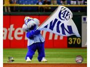Raymond the Tampa Bay Rays Mascot Photo Print (8 x 10) 9SIA1S74YJ8009