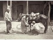 Turkestan Blacksmith Na Blacksmith Shoeing A Horse With The Help Of Another Man Turkestan Photograph C1865-72 Poster Print by  (18 x 24) 9SIA1S75RF7307