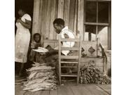 Sharecropper 1938 Nan African American Sharecropper Grades And Sorts Cured Tobacco Leaves On His Cabin Porch Prior To Auction Near Douglas Georgia Photograph By