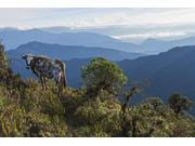 Mountain range east of Pojo; Departamento Cochabamba, Bolivia Poster Print (19 x 12)