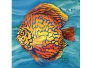 Vibrant Sea Life IV Poster Print by Patricia Pinto (12 x 12) 9SIA1S740E4922