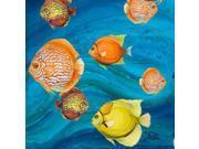 Aquatic Sea Life II Poster Print by Patricia Pinto (24 x 24) 9SIA1S74WW5043