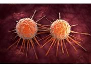 Conceptual image of cancer virus Poster Print (34 x 23)