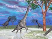 Brachiosaurus dinosaurs grazing on trees. Poster Print (32 x 24)