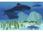 Two rockfish watch cautiously as a pod of pilot whales swim past a coral reef Poster Print (34 x 23) 9SIA1S74CM9353