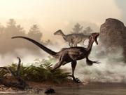 A pair of velociraptors patrol the shore of an ancient lake Poster Print (16 x 12)