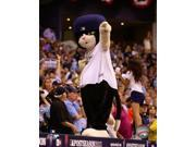 DJ Kitty Tampa Bay Rays Mascot Photo Print (8 x 10) 9SIA1S75157737