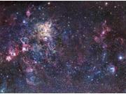 The Tarantula Nebula Poster Print (32 x 24)