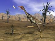 Mononykus dinosaur chasing a dragonfly in the desert Poster Print (32 x 24)