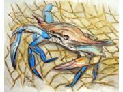 Blue Crab Poster Print by Mark Ray (8 x 10) 9SIA1S740G6834
