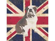 British Bulldog Poster Print by Sam Appleman (12 x 12)