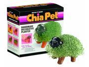 Chia Pet - Puppy 9SIA1V039Y8491