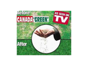 Canada Green Grass Seed - 6 Pound Bag
