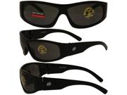 Birdz Blackbird Aggro-Look Riding Glasses with Smoke Lenses