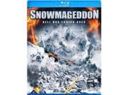 Snowmageddon 9SIAA763US8483