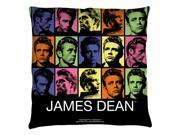 James Dean Color Block Throw Pillow White 26X26 9SIA2923JG3520