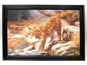 Bobcat 3 D picture 0126 3D2893