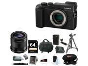 Panasonic GX8: DMC-GX8KBODY LUMIX GX8 (DSLM) Mirrorless Camera Body w/ 42.5mm f/1.7 Asph. Lens and 64GB Accessory Bundle