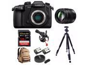 PANASONIC LUMIX DC-GH5 Body 4K Camera + PANASONIC H-HSA12035 + 128GB Bundle 9SIV0746P70439