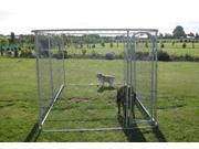 ALEKO® Dog Kennel 13' x 7 1/2' x 6' DIY Box Kennel Chain Link Dog Pet System