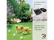Delux In-Ground Electric Dog Fence Underground System with One Training Collar