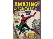Spiderman First Issue Comic Book Cover Wall Accent Sticker 9SIV1976Y33112