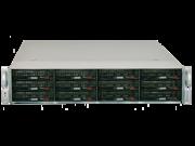 Digiliant R2E112LS-NW 24TB Windows Storage Server
