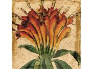 Art Effects Vibrant Floral IV 9SIA3CD3EV7590