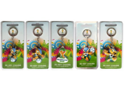 5pics/set Fuleco PVC Keychain souvenir of the 2014 World Cup in Brazil in 2014 the official World Cup mascot emblem and mascot 9SIV07M3GV3027