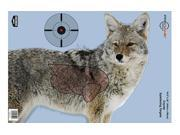 Birchwood Casey Pregame Target Target With Visible Vitals Coyote 16.5x24 3 Targets 35405