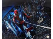 Stan Lee Marvel Comics Signed 16x20 Spider-Man Web Photo JSA 9SIA4F03E22941