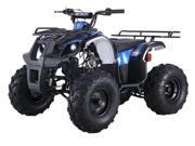 TaoTao 125cc D-R Plus Utility Kids ATV