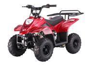 Tao Tao B1 ATV 110cc