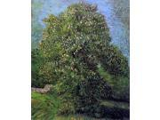 Vincent Van Gogh Chestnut Tree in Bloom - 16