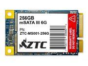 256GB ZTC Bulwark V2 mSATA 6G 50mm Solid State Disk - ZTC-MS001-256G
