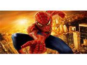 Spiderman Photo License Plate 9SIA5VG2F92936