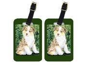 Pair of 2 Australian Shepherd Luggage Tags