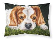 Cavalier Spaniel in the Grass Fabric Standard Pillowcase AMB1395PILLOWCASE