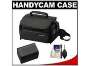 Sony LCS-U20 Medium Carrying Case for Handycam, Cyber-Shot, NEX Digital Camera (Black) with NP-FV70 Battery + Cleaning Kit