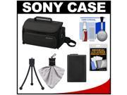 Sony LCS-U20 Medium Carrying Case for Handycam, Cyber-Shot, NEX Digital Camera (Black) with Battery + Accessory Kit