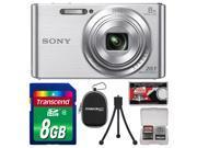 Sony Cyber-Shot DSC-W830 Digital Camera (Silver) with 8GB Card + Case + Flex Tripod + Accessory Kit