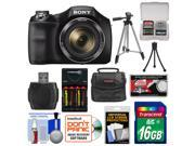 Sony Cyber-Shot DSC-H300 Digital Camera with 16GB Card + Batteries & Charger + Case + Tripods + Accessory Kit