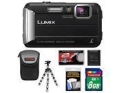 Panasonic Lumix DMC-TS25 Shock & Waterproof Digital Camera (Black) with 8GB Card + Case + Flex Tripod + Accessory Kit