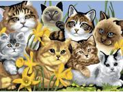 """Junior Large Paint By Number Kit 15-1/4"""" X 11-1/4""""-Cats Montage"""