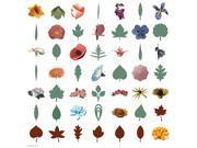 Cricut Project Cartridge-3D Floral Home Decor