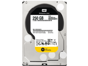 """WD Re WD2503ABYZ 250GB 7200 RPM 64MB Cache SATA 6.0Gb/s 3.5"""" Datacenter Capacity Internal Hard Drive Bare Drive"""